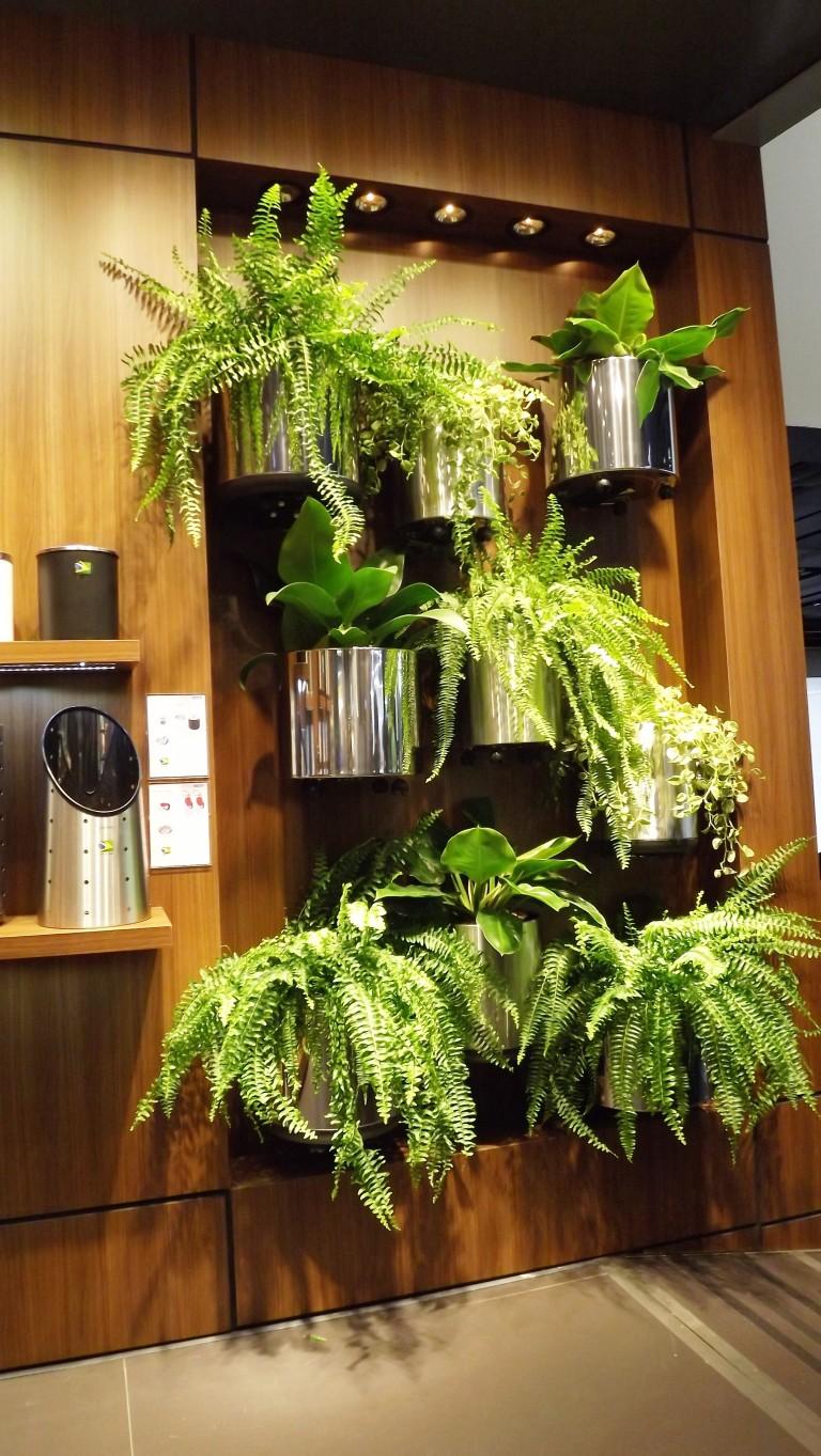 Lançamento Tramontina!! Cachepôs lindos para plantas!!