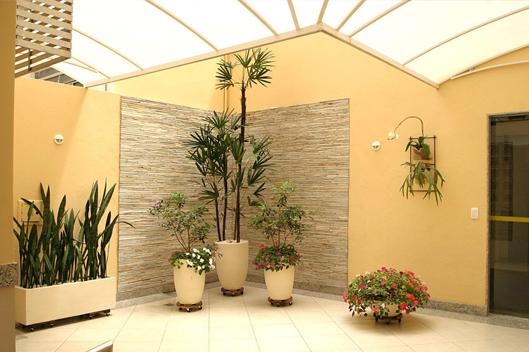 iluminacao-natural-plantas