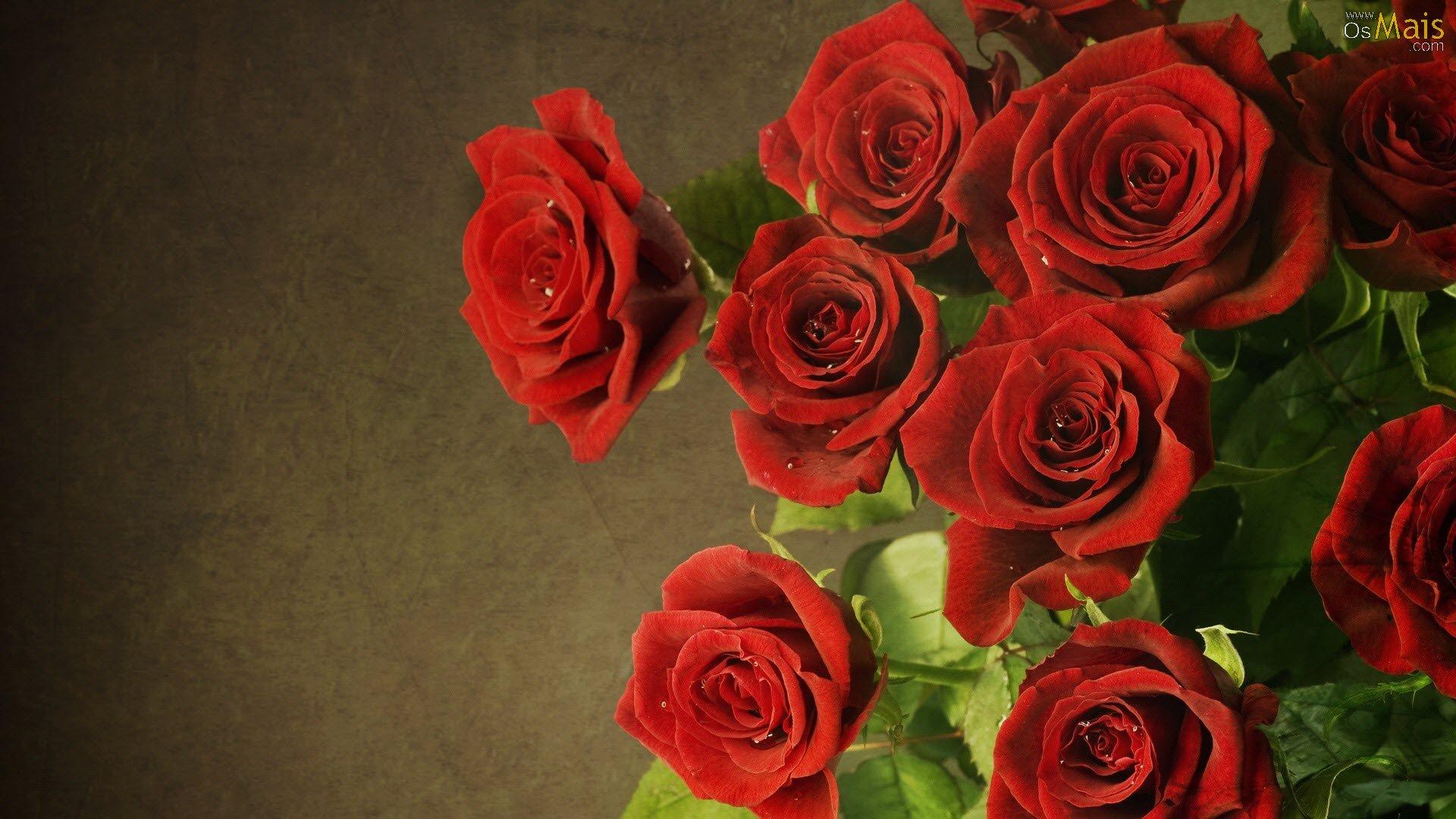 Não podemos esquecer das rosas vermelhas, item mais vendido em todo o pais no dia dos namorados. Quem não ama?